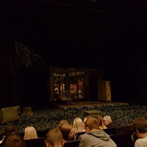 wisniowy-sad-w-teatrze-nowym 003