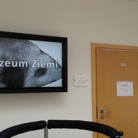 zsb1.poznan.pl 008