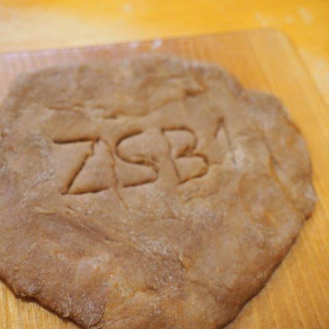 zsb1.poznan.pl 0016